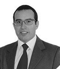 Fabio Giamberardini, Ing.